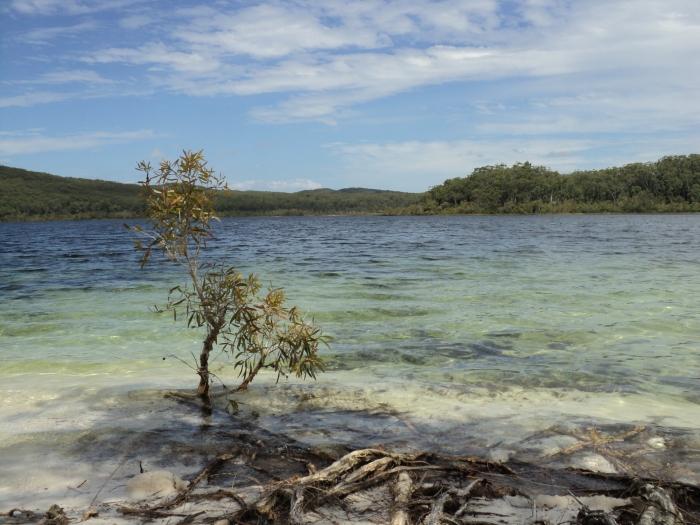 Het meer - ©Bard 2012